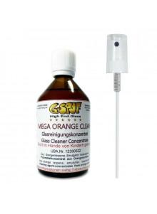 G-Spot Orange Clean Reiniger 100ml mit Sprühaufsatz