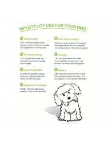 CBD Cure Dog Care - Benefits